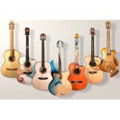 Для продажи гитар и других струнных инструментов